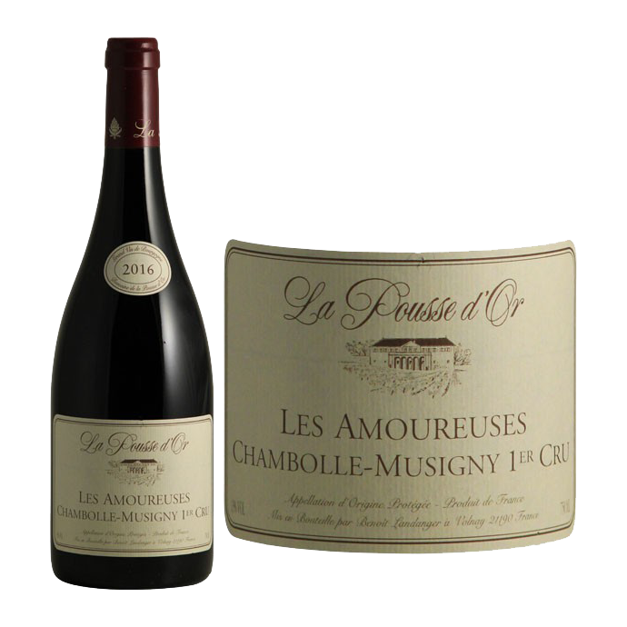 Chambolle-Musigny 1er Cru Les Amoureuses  - 1